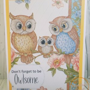Owlsome greeting card